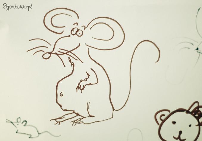 pokaz-szczurow-20