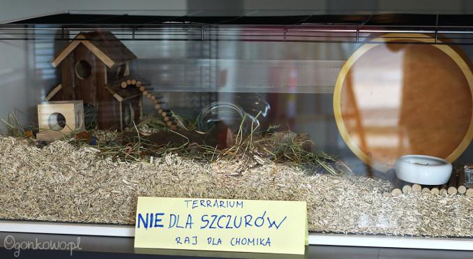 wystawa-odczarowac-szczury-13