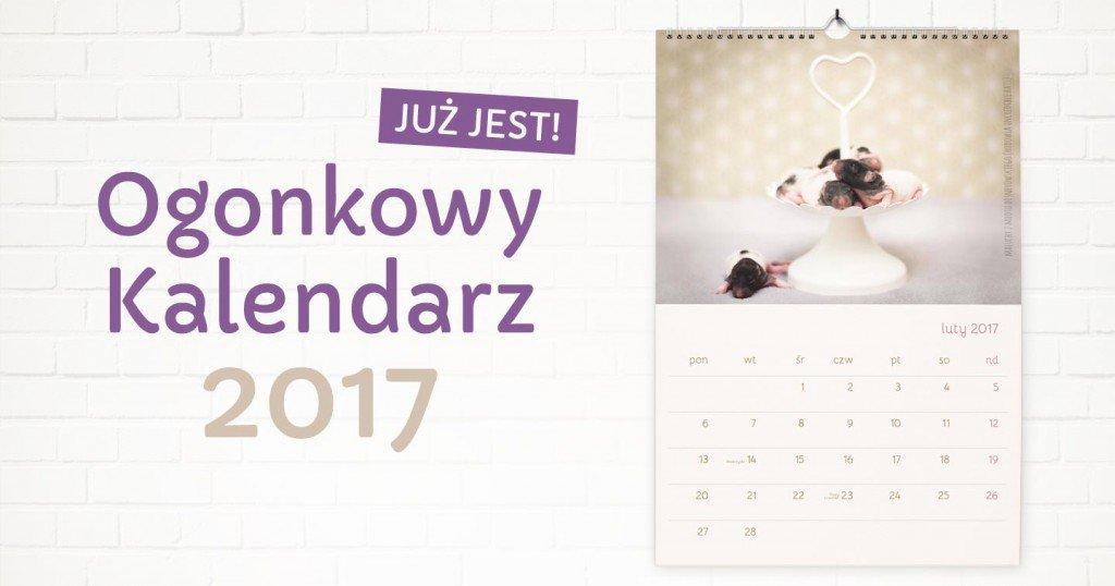ogonkowy-kalendarz-szczury-2017