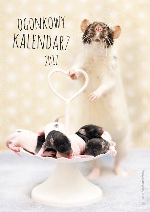 okladka2017-fb